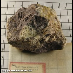 Mineral Specimen: Plumbojarosite from unknown location