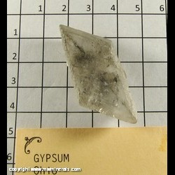 Mineral Specimen: Selenite Twin (Gypsum) from Ohio