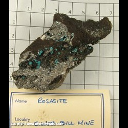 Mineral Specimen: Rosasite from Silver Bill Mine, Gleeson, Turquoise District, Dragoon Mts, Cochise Co,  Arizona