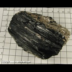 Mineral Specimen: Schorl Tourmaline, Muscovite from Royal Gorge, Fremont Co,  Colorado