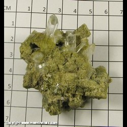 Mineral Specimen: Quartz with Included Epidote from Sonora, Mexico