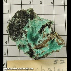 Minerals Specimen: Aurichalcite from Arizona