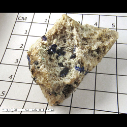 Minerals Specimen: Azurite Crystals on Quartz from Chihuahua, Mexico