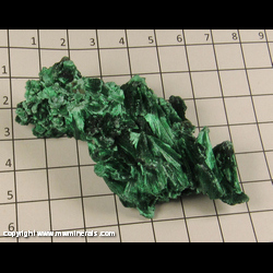 Minerals Specimen: Malachite, Chatoyant from Kolwezi District, Katanga (Shaba), Dem. Rep. of Congo