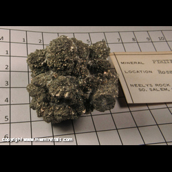 Mineral Specimen: Pyritized Marine Burrow from Ross Co,  Ohio