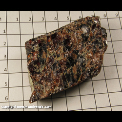 Minerals Specimen: Almandine Garnet in Schist from Gore Mt,  North River, Warren Co,  New York