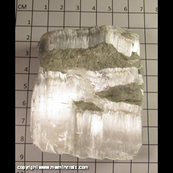 Mineral Specimen: Selenite from Chihuahua, Mexico