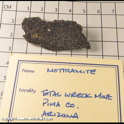 Minerals Specimen: Mottramite from Total Wreck Mine, Pima Co., Arizona