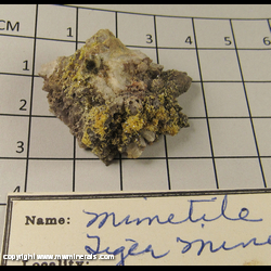 Minerals Specimen: Mimetite on Quartz from Tiger, Mammoth Dist,  Pinal Co,  Arizona