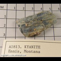 Minerals Specimen: Kyanite from Ennis, Madison Co., Montana