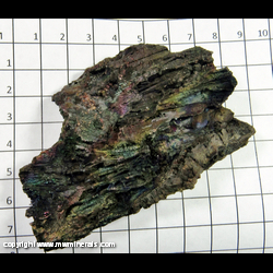 Mineral Specimen: Turgite (Goethite/Hematite), Iridescent Casts from Graves Mountain, Lincoln Co., Georgia