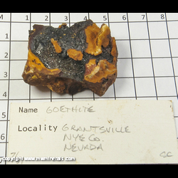 Mineral Specimen: Goethite from Grantsville District, Stansbury Mts, Tooele Co,  Utah