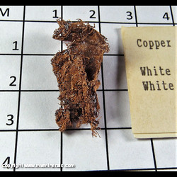 Mineral Specimen: Copper Crystals from White Pine Mine, White Pine, Ontonagon Co., Michigan