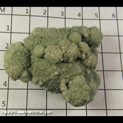 Mineral Specimen: Glauconite Sand Concretion from Green Co., Wisconsin