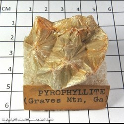 Mineral Specimen: Pyrophyillite from Graves Mountain, Lincoln Co., Georgia