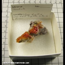 Mineral Specimen: Vanadinite from Silver King Mine, Silver Dist,  Trigo Mts,  La Paz Co,  Arizona
