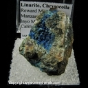Minerals Specimen: Linarite, Chrysocolla from Reward Mine, Manzanar Station area, Inyo Mts., Inyo Co., California