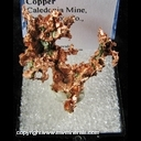 Minerals Specimen: Copper from Caledonia Mine, Ontonagon Co., Michigan