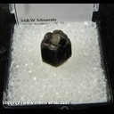 Mineral Specimen: Almandine Garnet from Laniel, Quebec, Canada Collected by D. Hiller