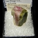 Mineral Specimen: Tourmaline, Watermelon from San Diego Co., California Ex. A. Neely, 1960s