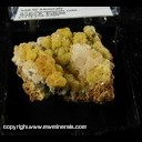 Minerals Specimen: Mimetite, Calcite, Smithsonite from Chihuahua, Mexico, Ex. A. Neely 1960s