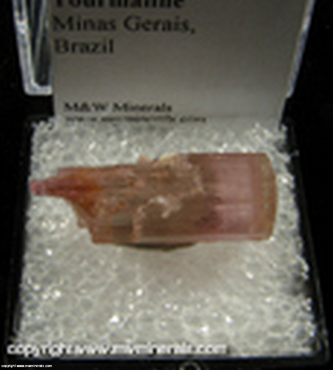 Mineral Specimen: Tourmaline, Double Terminated from Minas Gerais, Brazil