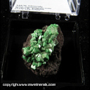 Minerals Specimen: Adamite variety: Cuprian from Tsumeb, Namibia