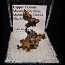 Mineral Specimen: Copper Crystals from Mountain City Mine, Mountain City District, Elko Co., Nevada