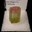Mineral Specimen: Tourmaline (gemmy, not terminated) from Himalaya Mine, San Diego Co., California