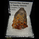 Mineral Specimen: Spessartine Garnets on Smoky Quartz from Tongbei, Fujian, China