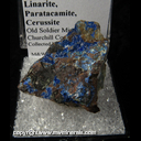 Mineral Specimen: Linarite, Paratacmite, Cerussite from Old Soldier Mine, Lyon Co., Nevada, Collected by teve Pullman