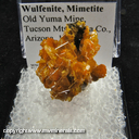 Mineral Specimen: Wulfenite, Mimetite from Old Yuma Mine, Tucson Mts., Pima Co., Arizona