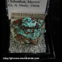 Mineral Specimen: Aurchalcite from Chihuahua, Mexico, Ex.. A. Neely, 1960s