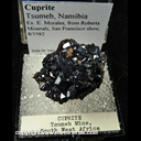 Mineral Specimen: Cuprite Crystals from Tsumeb, Namibia, Ex. E. Morales, from Roberts Minerals, San Francisco show, 8/1982