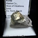 Mineral Specimen: Pyrite from Marion Co., West of Okaloosa, Iowa, Ex. Norm Woods