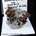 Mineral Specimen: Marcasite from Linwood Quarry, Buffalo, Scott Co., Iowa, Ex. Norm Woods
