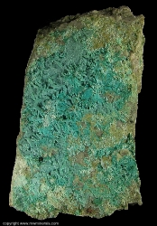 Minerals Specimen: Chrysocolla pseudomorph after Brochantite from Morenci, Greenlee Co., Arizona, USA
