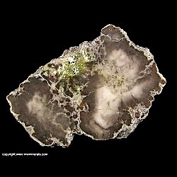 Minerals Specimen: Datolite with Epidote from Flint Steel Mine, Ontonagon County, Michigan, USA