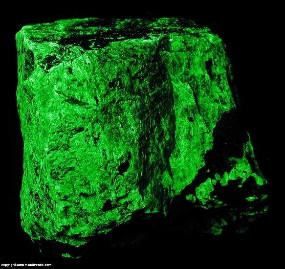 Fluorescent Mineral Specimen: Troostite - Manganese Rich Willemite from Franklin Mine, Franklin, Sussex Co., New Jersey