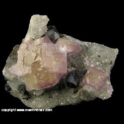 Minerals Specimen: Fluorite and Sphalerite on Druze Quartz from W.L. Davis-Deardorff Mine, Ozark-Mahoning Group, Cave-In-Rock, Hardin Co., Illinois