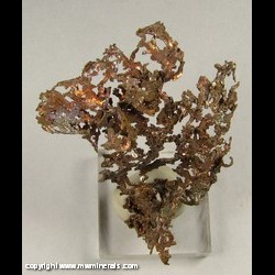 Minerals Specimen: Copper from Cheg Men Shan Deposit, Jiurui District, Jiangx, China