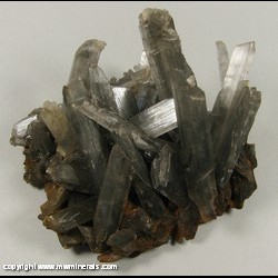 Minerals Specimen: Tuscarawas Selenite from Drainage Pipes from PPG Industries into Tuscarawas River, Barbeton, Summit Co., Ohio