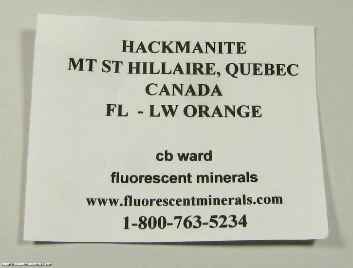 Mineral Specimen 3626 Sodalite variety Hackmanite from ...