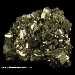 Minerals Specimen: Pyrite from Gilman, Colorado