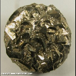 Minerals Specimen: Pyrite from American Aggregates Corp. Quarry, Indianapolis, Marion Co., Indiana