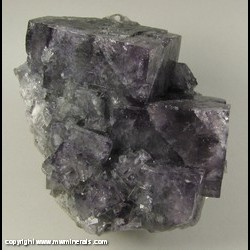 Minerals Specimen: Fluorite from Blackdene Mine, Ireshopeburn, Weardale, North Pennines, Co. Durham, England