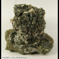 Minerals Specimen: Pyrite after Marine Burrow from Ross Co., Ohio