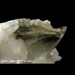 Minerals Specimen: Millerite and Chalcopyrite on and included in Calcite from Coralville, Johnson Co., Iowa