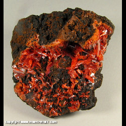 Minerals Specimen: Crocoite on Goethite from Red Lead Mine, Dundas, Tasmania, Australia