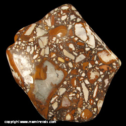Mineral Specimen: Tennessee Pudding Stone from Eastern Tennessee